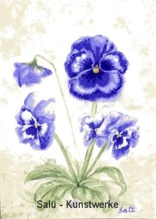 Blaues Stiefmütterchen